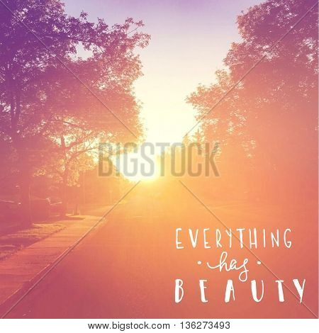 Inspirational Typographic Quote - Everything has Beauty