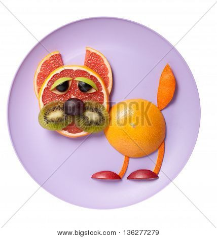Funny cat made of grapefruit and orange on plate