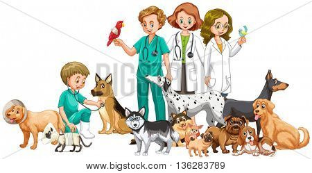 Vets and doctors with animals