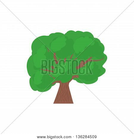 A tree with a spreading green crown icon in cartoon style on a white background