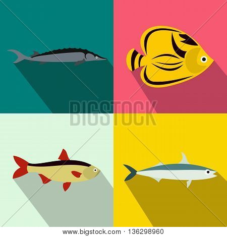 Fish banners set in flat style for any design