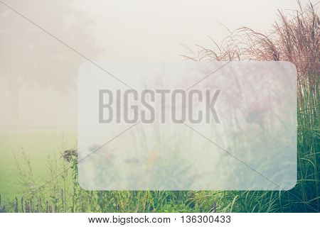 Grass at foggy morning, Banner Blank Board Message Copy-space Concept