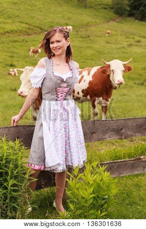 Young woman with fluttering hair leaning in a Bavarian dirndl on a fence with cows in the background on a meadow.