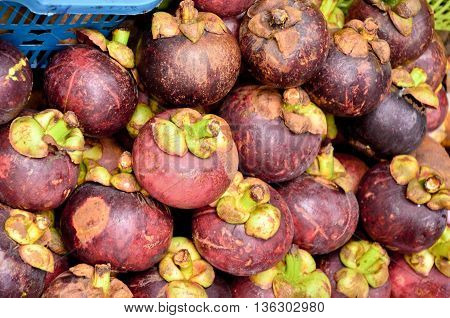 mangosteen on sale at the fruit market in thailand