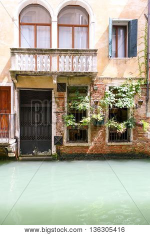 Venice canal with a milky-green water and the facade of the house with plants windows and balcony.