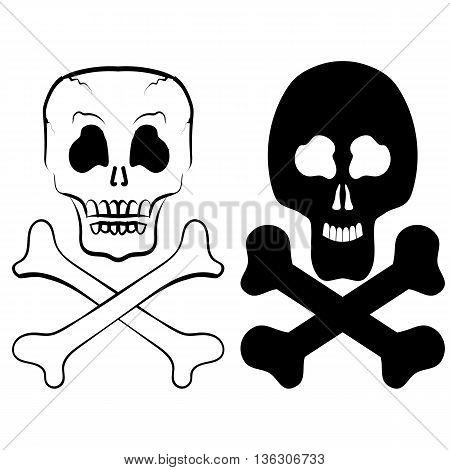 Human Skull Cross Bones Isolated on White Background