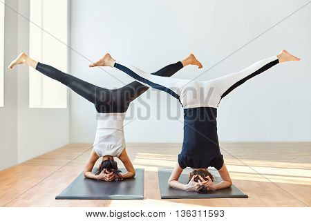 Two Young Women Doing Yoga Asana Open Angle Pose In Headstand