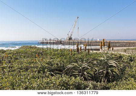Vegetation Beach Ocean And Concrete Pier Under Construction