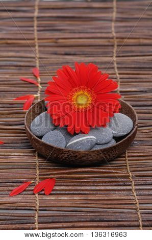 Red gerbera with gray stones in bowl on mat, petals