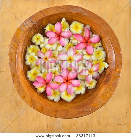 wooden bowl in many colorful frangipani on wood board