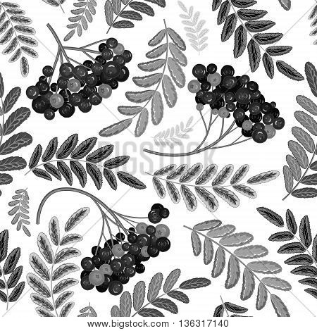 Rowan berry seamless texture. Black and white vector illustration