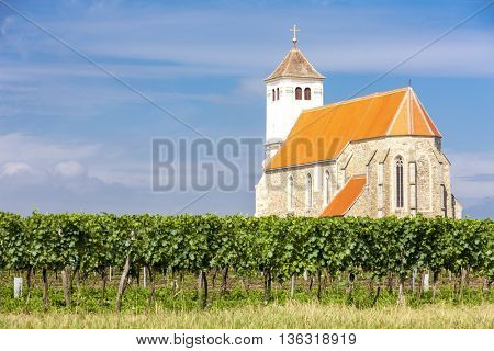 church with vineyard, Kirchenberg, Lower Austria, Austria