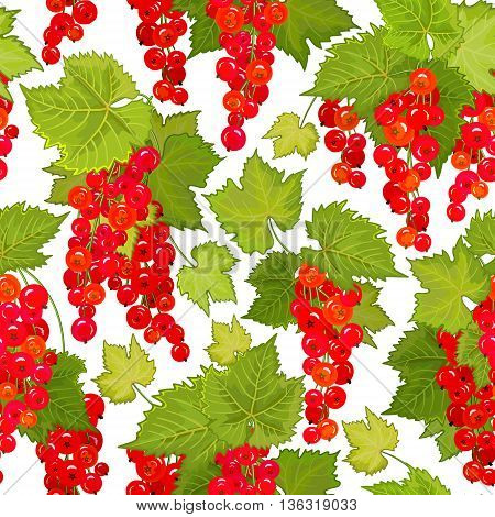 Red currant seamless pattern. Collection of berries. Vector illustration of berries isolation on white for design menus, recipes and packages product.