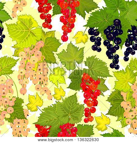 Red black white currant seamless pattern. Collection of berries. Vector illustration of berries for design menus, recipes and packages product.