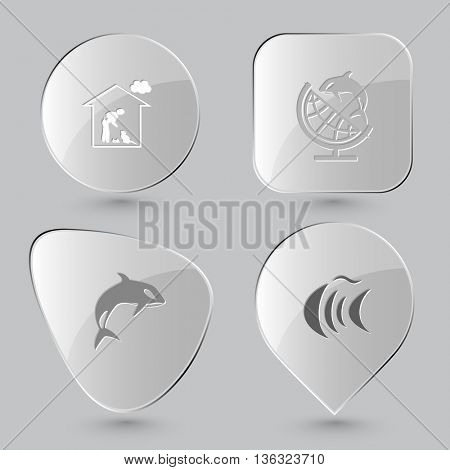 4 images: home cat, globe and shamoo, killer whale, fish. Animal set. Glass buttons on gray background. Vector icons.