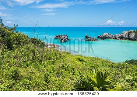 Green foliage and morning glories surround this tranquil seascape of Tobacco Bay in Bermuda.