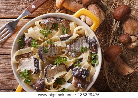 Italian Pasta With Porcini Mushrooms And Cream Sauce Close-up. Horizontal Top View