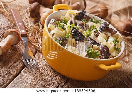 Italian Pasta With Porcini Mushrooms And Cream Sauce Close-up. Horizontal