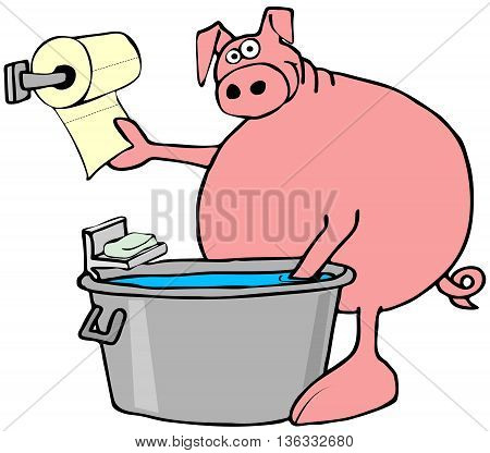 Illustration of a pink pig washing its hooves in a metal tub and drying them with a paper towel.