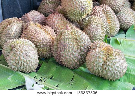 Group of durian in the market. durian, fruit, fresh