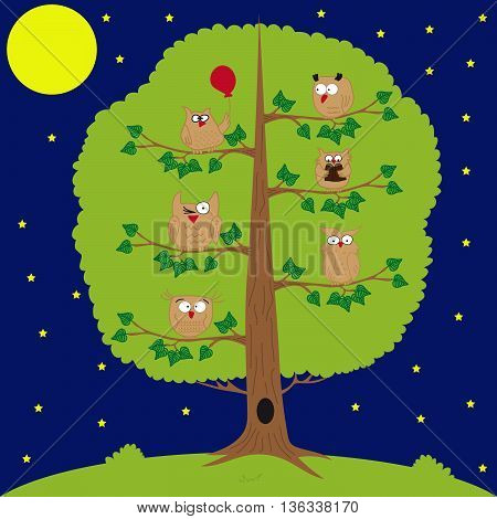 owl sitting at night on the tree, moon and stars, funny owls.