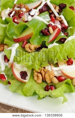 Salad of apples cranberries pomegranate pine nuts and walnuts dressed with yogurt