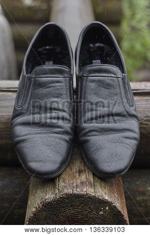 wet black leather shoes on wood close up