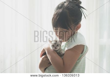 Beautiful asian girl kissing american shorthair cat under sunlight from a window