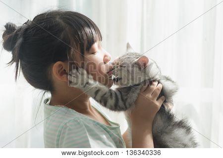 Beautiful asian girl kissing american shorthair cat under sunlight from a window