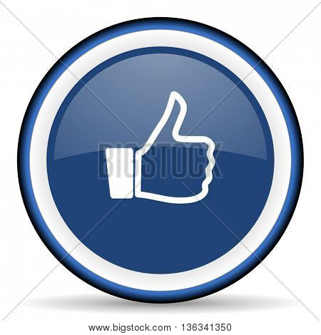 like round glossy icon, modern design web element