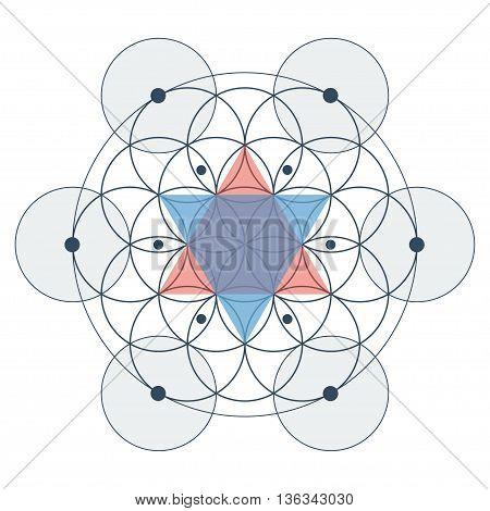 Flower of life sacred geometry color vector illustration