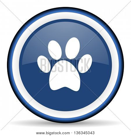 foot round glossy icon, modern design web element