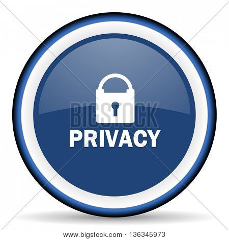 privacy round glossy icon, modern design web element