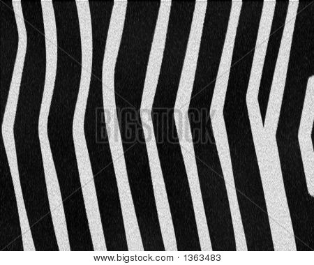 Zebra Wide Stripes Short Fur