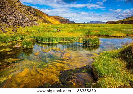 Summer in Iceland. Green grass among hot springs. The picturesque valley in Landmannalaugar national park.