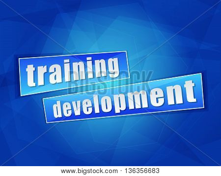training development over blue background, flat design, business education concept words, vector
