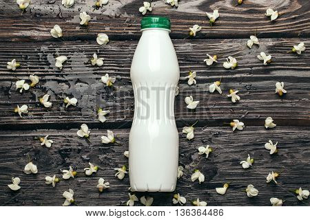 Plastic Bottle And Acacia Blossoming
