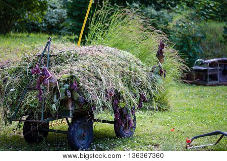 Haymaking at summer in the village with haystack