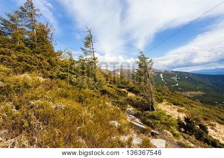 Hiking trail in the mountains of the Carpathians