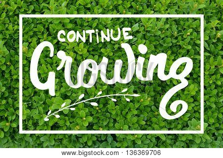 Continue growing hand lettering motivational message on natural green background