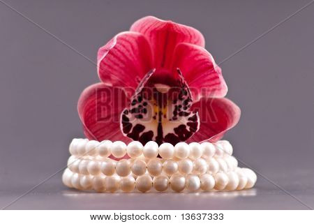 3 Row Freshwater Pearl Bracelet Gift With Orchid