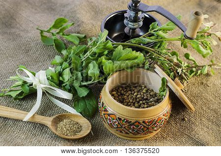 coriander - fresh leaves, seeds and ground coriander
