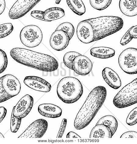 Cucumber hand drawn vector seamless pattern. Vegetable engraved style illustration. Isolated cucumber and sliced pieces. Detailed vegetarian food drawing background. Farm market product.