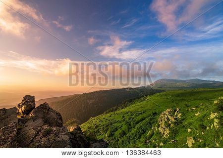 composite landscape with forest in mountains in summer