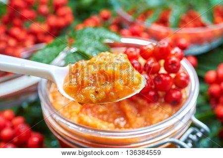 Jar with home made rowan berries jam