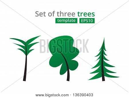 Abstract green trees set. Concept for design template with Christmas Tree Palm tree and Oak.