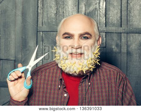 old bearded man with yellow flowers in long grey beard on smiling happy face in red checkered shirt holding scissors on wooden background