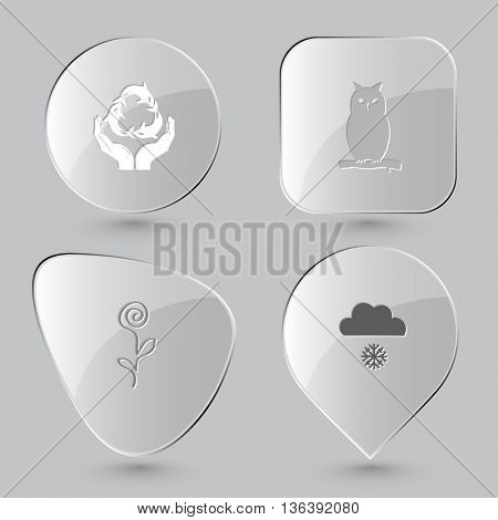 4 images: protection sea life, owl, flower, snowfall. Nature set. Glass buttons on gray background. Vector icons.