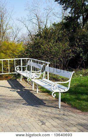 Two White Benches In The Park
