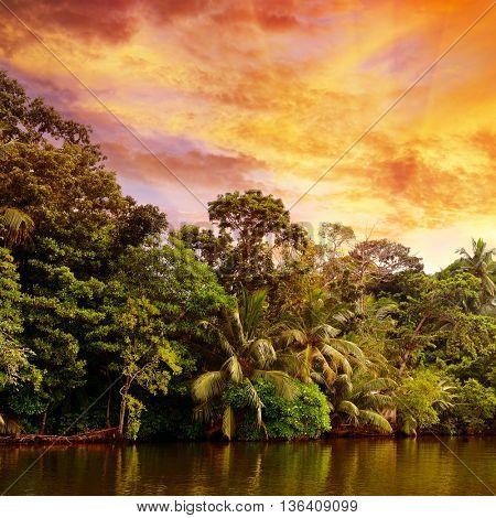 Bright sunrise over lake in jungle
